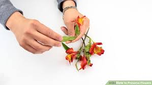 preserve flowers 3 ways to preserve flowers wikihow