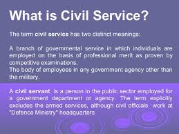 What Is The Best Definition Of A Functional Resume by Civil Service In Developed U0026 Developing Countries A Comparative Stu U2026