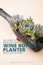 Buy A Planter Diy Wine Bottle Planter For Succulents Succulents And Sunshine
