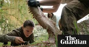 curriculum vitae exles journalist killed videos de terror future shock unearthing the most cutting edge sci fi movies of