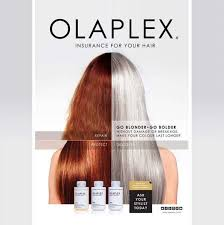 where can you buy olaplex hair treatment the wonderful world of olaplex mod