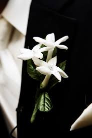 Groom S Boutonniere 59 Best Grooms Bouquet Images On Pinterest Boutonnieres