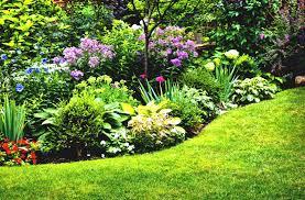perennial flower garden designs ideas and design co small garden