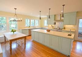 blue kitchen islands magnificent kitchen designs with blue kitchen island