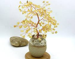 bonsai tree etsy