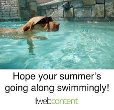Swimming Pool Meme - meme portfolio iwebcontent