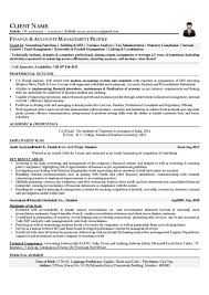 Profile Resume Samples by Finance Profile Resume Free Resume Example And Writing Download