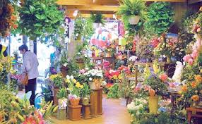 flower store flowers hinsdale phillip s flowers florist shop in hinsdale il