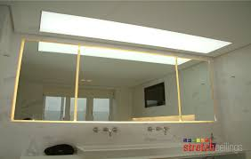 Bathroom Lighting Solutions Bathroom Ceiling Walls Mold And Mildew Removal Clipgoo