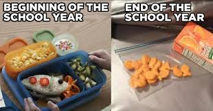 School Lunch Meme - 17 end of the school year moments that make parents go why god