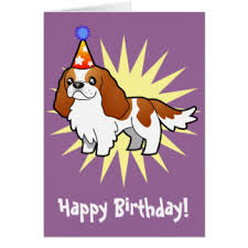 cavalier king charles birthday greeting cards zazzle