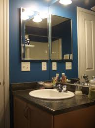 Royal Blue Bathroom Decor by To A Pretty Life February 2011