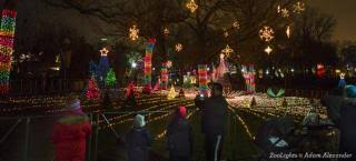 when do the zoo lights start christmas lights in chicago holiday tours choose chicago