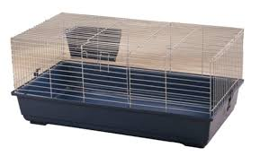 Cages For Guinea Pigs New And Used Cages For Sale For Finch Macaws And Rabbits In