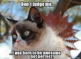 Tardar Sauce Meme - 1440 best grumpy cat tardar sauce images on pinterest funny