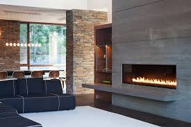 Contemporary Gas Fireplaces by Modern Gas Fireplace Inserts Living Room Contemporary With Black