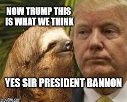 Sloth Meme Maker - political advice sloth meme generator imgflip