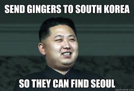 Funny Korean Memes - send gingers to south korea so they can find seoul good guy kim