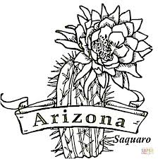 arizona bird coloring free printable coloring pages