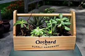 planter for succulents succulent toolbox planter love love love green mean muthas