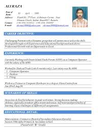 cv format word doc gallery of cv template doc curriculum vitae sample doc 12 free
