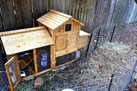 Rabbit Hutch Set Up Rabbit Update And Happenings U2013 Sew Grown