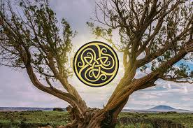 Tree Symbols Find Out Your Celtic Tree Symbol And What It Says About You