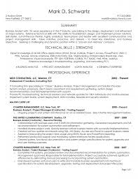 Experience In Resume Example by Business Analyst Skills Matrix Template Business Analyst Resume