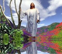imagenes lindas de jesus con movimiento admin imágenes page 73
