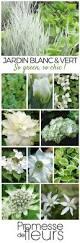 Ambiance Et Jardin Best 25 Ideas Jardin Ideas Only On Pinterest Terrario De Hadas