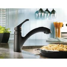 kitchen single handle moen extensa with sprayer for kitchen