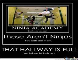 Martial Arts Memes - cho s martial arts memes