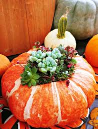 Fall Vase Ideas Perfect Fall Vases Use Your Favorite Pumpkin As A Vase U0026 Add