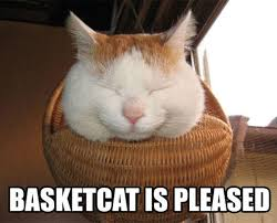 Smiling Cat Meme - shironeko basket cat know your meme