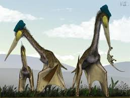 avian ancestors dinosaurs that learned to fly