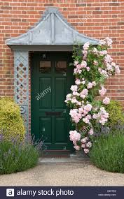 rambling pink roses climb the porch of a green front door in stock