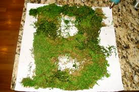 moss covered letters diy wedding project moss covered letters