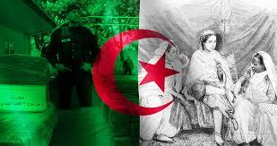 Algerian Flag Cannabis In Algeria