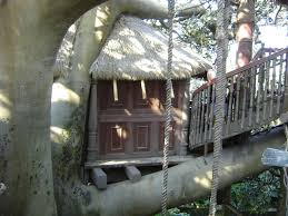 disney vacation kingdom swiss family robinson treehouse