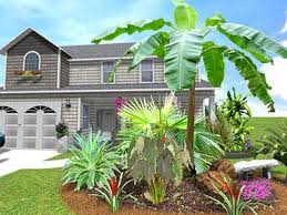 ideas for tropical landscaping pdf