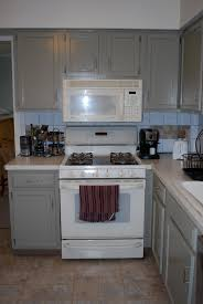 What Color Kitchen Cabinets Go With White Appliances New Microwave Guinness U0027 Backyard