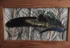 turkey feather painting painted feathers ebay