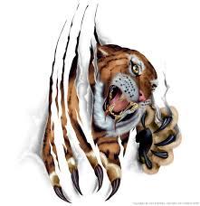 tiger images reference tiger