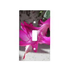 cactus light switch covers zazzle