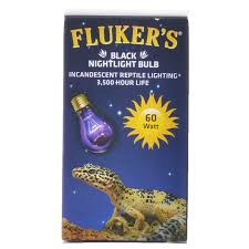60 watt aquarium light flukers flukers black nightlight bulb incandescent reptile light