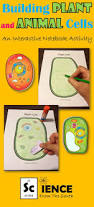 551 best fifth grade science images on pinterest teaching