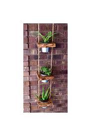 Hanging Indoor Planter by Hanging Planter Indoor Planter Succulent Planter Vertical
