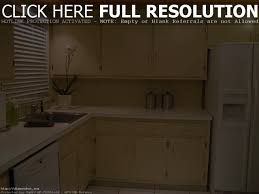 paint kitchen cabinet doors maxbremer decoration
