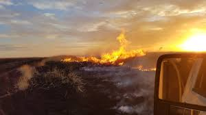 Wild Fires In Oregon Update by Wildfire Oregon Dept Of Forestry