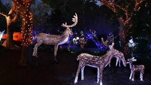 best places to see christmas lights ellaslist